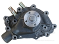 66-69 289,302,351W   Cast Iron Water Pump