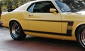 69 Black Boss 302 Stripe Kit