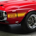69-70 Gold Shelby GT350 Stripe Kit