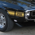69-70 Gold Shelby GT500 Stripe Kit