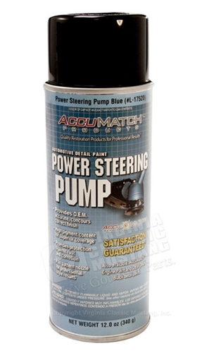 Mustang Power Steering Pump Paint