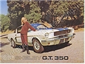 66 SHELBY COLOR SALES BROCHURE