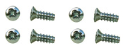 65-66 STAINLESS STEEL TAIL LIGHT DOOR SCREWS (8)